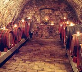 Die Weine der Kellerei Szent Kristóf